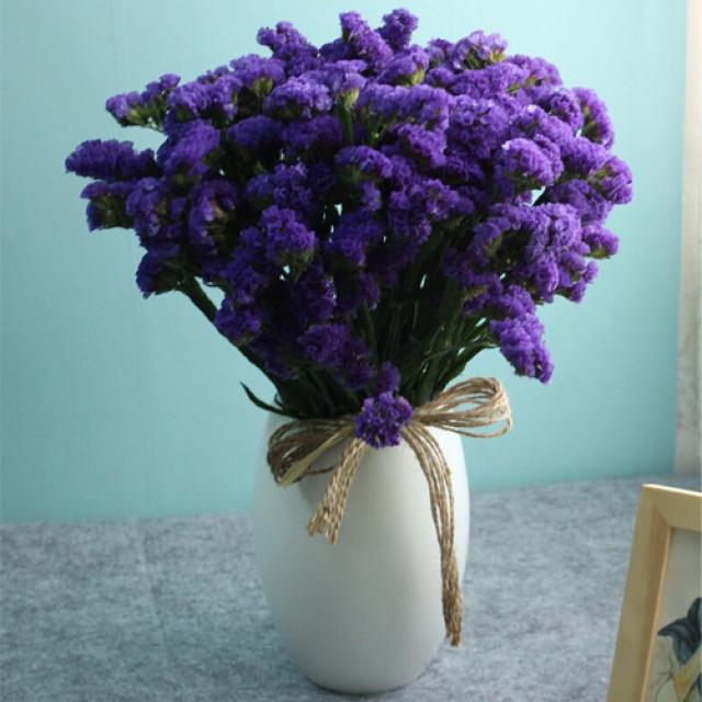 勿忘我-紫色勿忘我瓶花