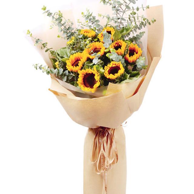 阳光满溢-10支精品向日葵(花束高度1.2米左右)