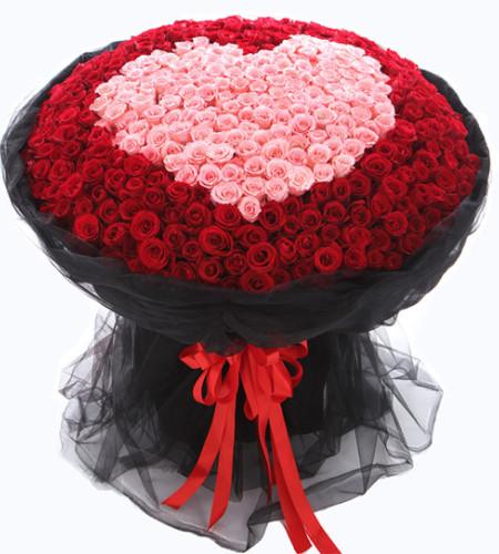 我爱你-520枝玫瑰(红玫瑰+粉玫瑰)