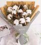 圣诞守护-11朵棉花花束