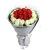 浪漫爱情----红玫瑰12枝,白玫瑰17枝