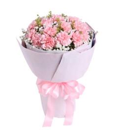 思念--粉色康乃馨19枝