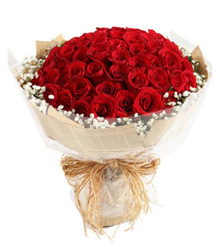 爱情的魅力--红玫瑰66枝