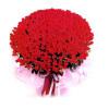 命中注定--紅玫瑰999枝
