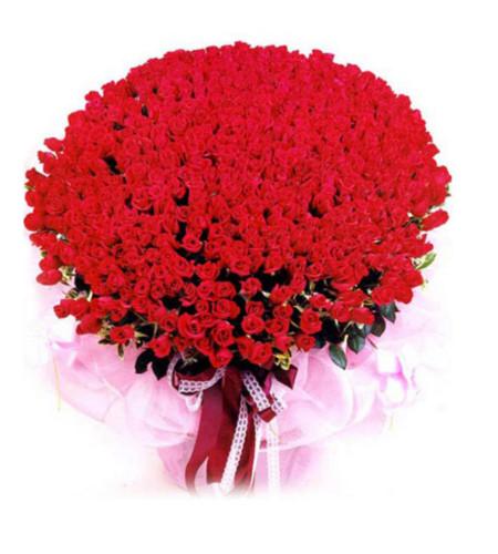 命中注定--红玫瑰999枝
