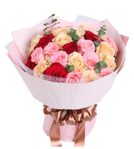 绚丽多彩--戴安娜粉玫瑰11枝,香槟玫瑰13枝,红玫瑰5枝