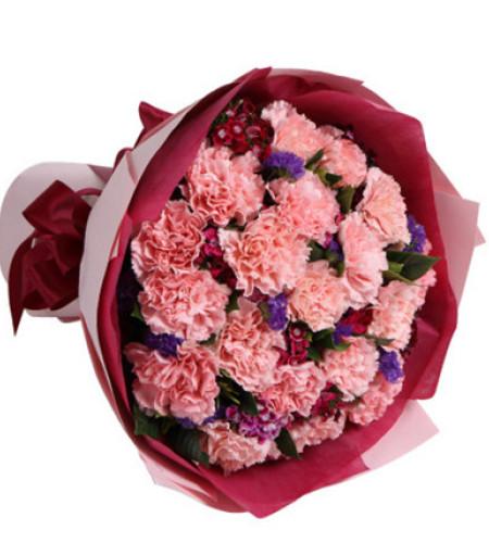 祝福临门--粉色康乃馨19枝
