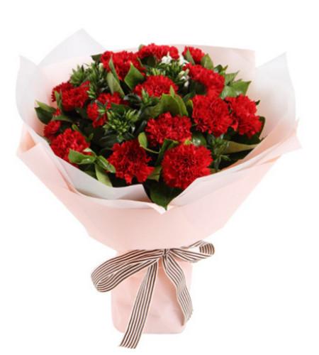 心心念念--红色康乃馨16枝,白色相思梅5枝