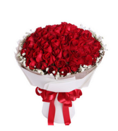 高调的爱着你--紅玫瑰66枝