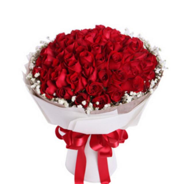 高调的爱着你--红玫瑰66枝