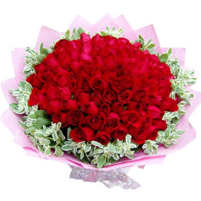 爱是什么--红玫瑰66枝