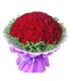 见证--红玫瑰66枝