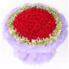 异地爱情--红玫瑰66枝