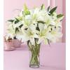 分外美丽-白色多头香水百合9枝