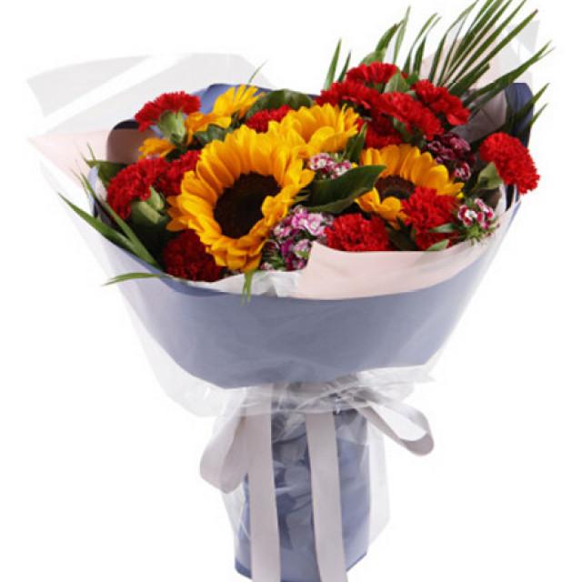 真心的祝福--红色康乃馨19枝,向日葵5枝
