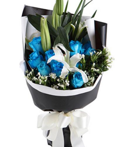 爱的乐章--蓝玫瑰11枝