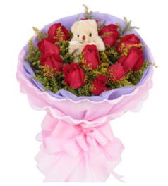 真心--红玫瑰11枝