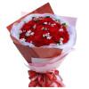 呵护--红色康乃馨33枝