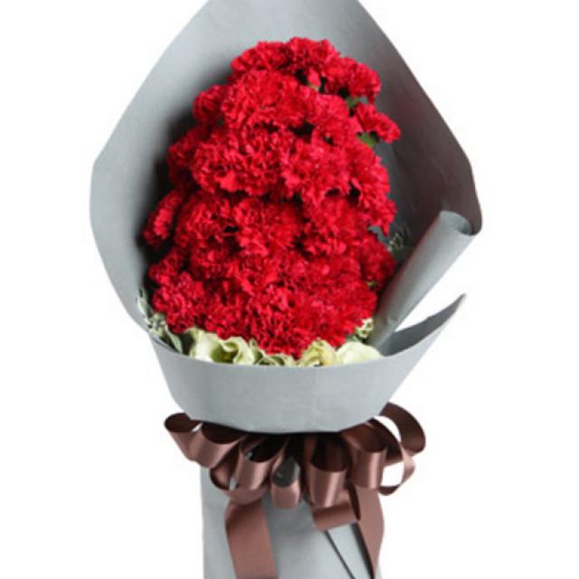 幸福万年长--红色康乃馨29枝
