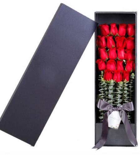 真爱--紅玫瑰19枝