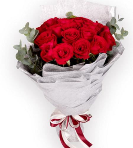 我只在乎你--红玫瑰21枝