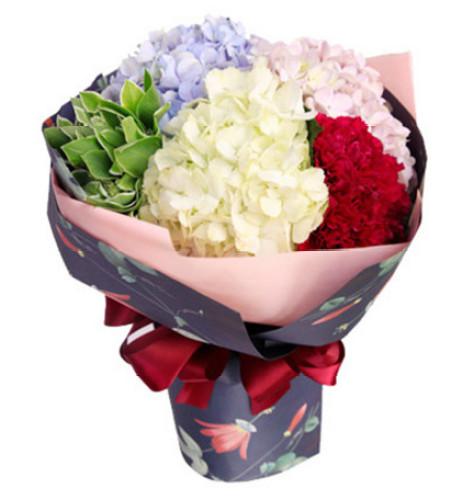 幸福快乐--9枝红色康乃馨,淡蓝色、白色、粉色绣球共3枝