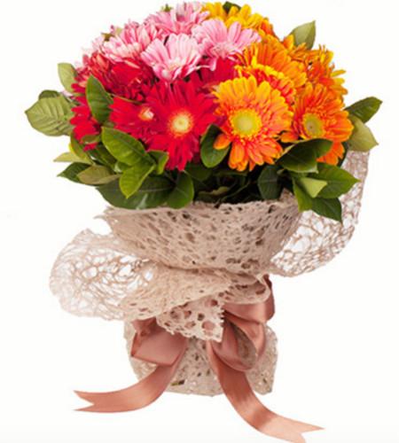 笑靥如花--红色、橘色、粉色三色扶郎花24枝
