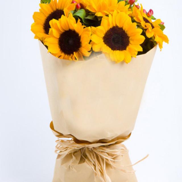 微笑拥抱每一天--向日葵9枝,红豆