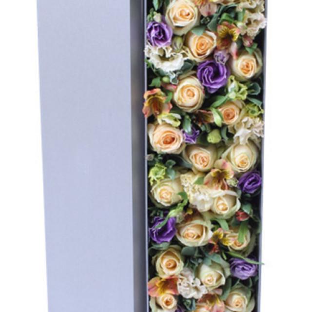 追梦--香槟玫瑰19枝,紫色桔梗5枝,香槟桔梗5枝