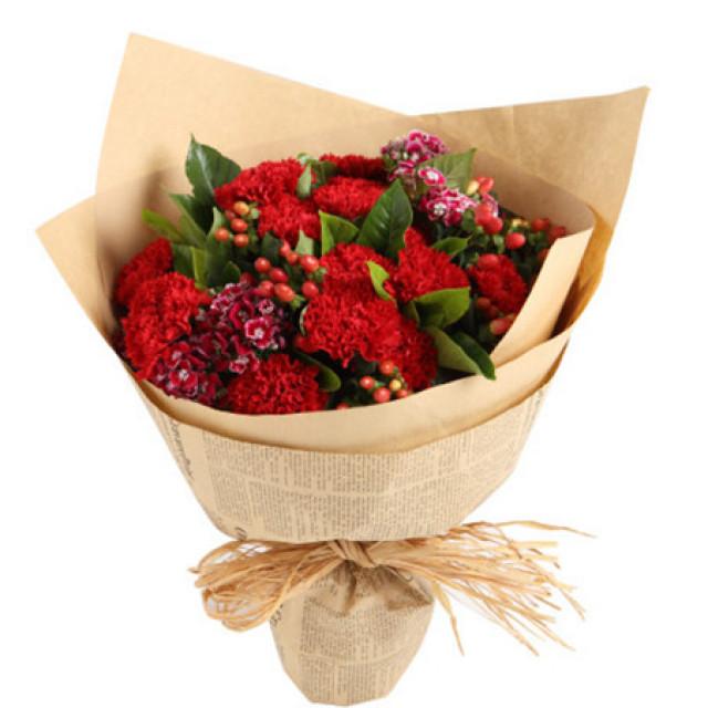 温馨时光--红色康乃馨16枝