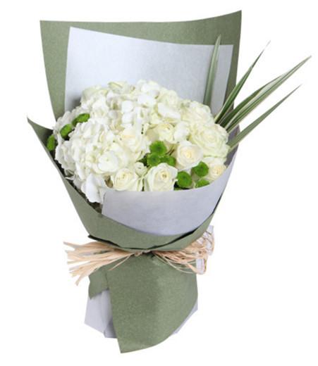 雪山白玫瑰15枝