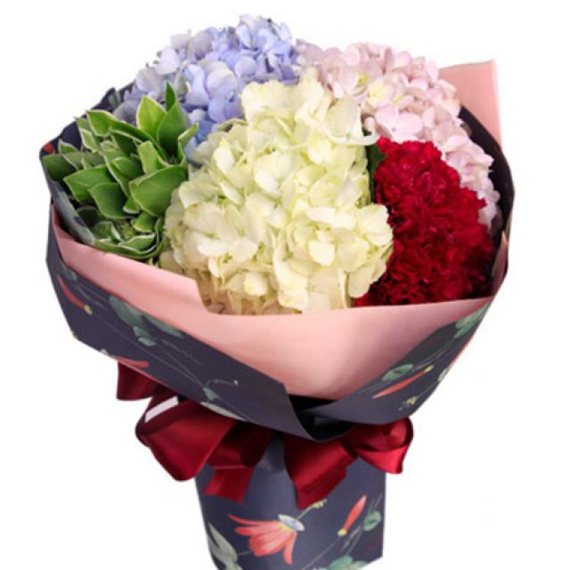 心中的芬芳--各色绣球花共3枝,红色康乃馨9枝