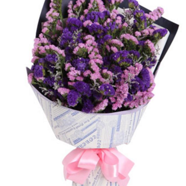 勿忘我--紫色+粉色勿忘我各一扎