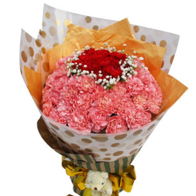健康快乐--11枝红色康乃馨、55枝粉康乃馨