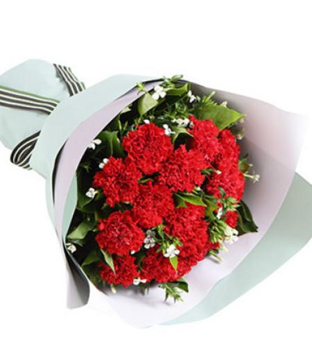 康乐--红色康乃馨12枝,白色相思梅2枝,栀子叶0.5扎