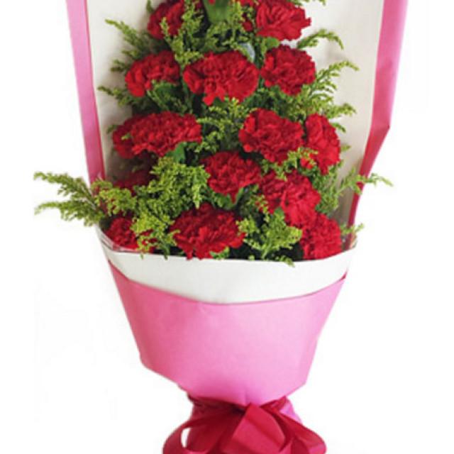 心声--红色康乃馨16枝