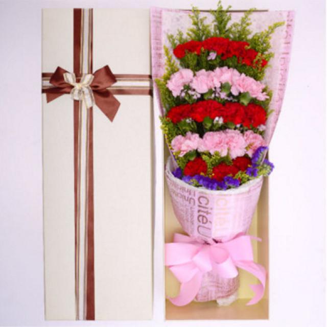 挂念--11枝红色康乃馨,8枝粉色康乃馨