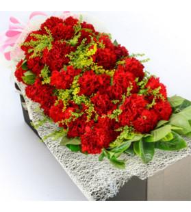 呵護--19枝紅色康乃馨