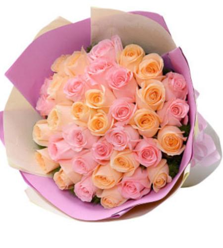 融入心房--粉玫瑰+香槟玫瑰混搭33枝