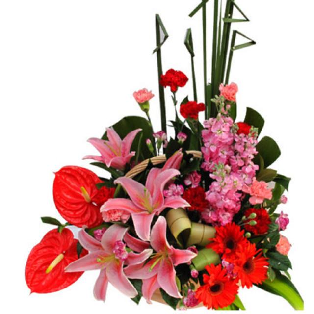 轻声问候--红掌、多头粉香水百合、红色扶郎、康乃馨等花材