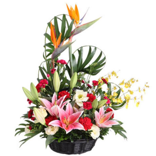 感恩的心--粉色香水百合3枝,红色康乃馨11枝,天堂鸟2枝,跳舞兰5枝
