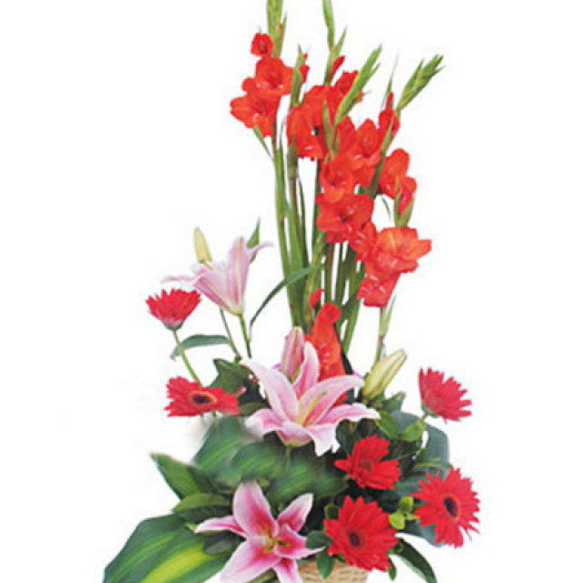 幸福安康--适用于友情、祝福、商务、新年、春节、节庆