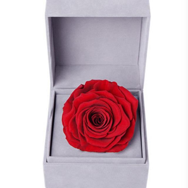 爱的颜色--红色永生玫瑰:厄瓜多尔进口巨型玫瑰