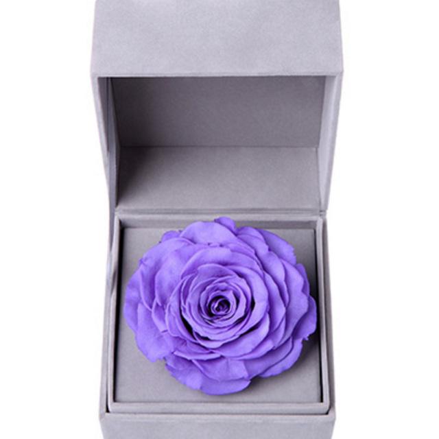 相信--紫色永生玫瑰:厄瓜多尔进口巨型玫瑰