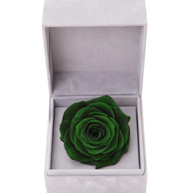 夏之梦--绿色永生玫瑰:厄瓜多尔进口巨型玫瑰