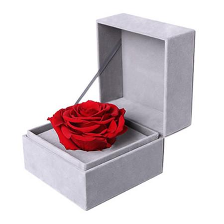 红色永生玫瑰1-3