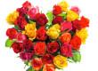 女生过生日送什么花?