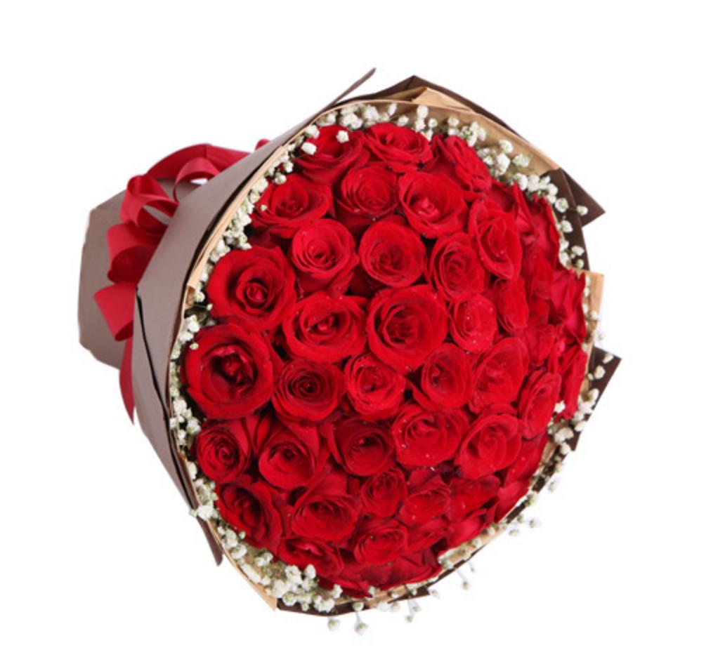 红玫瑰50枝1-2.jpg