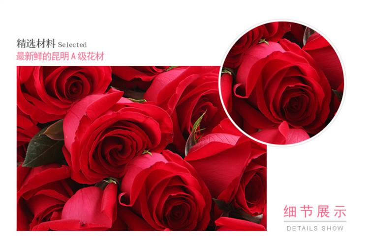 昆明红玫瑰图片