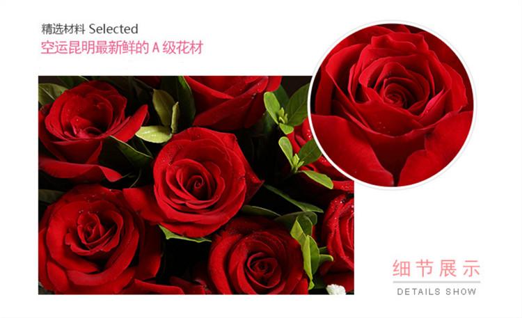 红玫瑰素材2.jpg